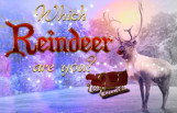 which_reindeer_are_you_featured