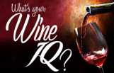 whats_your_wine_iq_featured