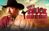 which_chuck_norris_are_you_featured