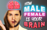 how_male_female_is_your_brain_featured