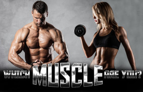 which_muscle_are_you_featured