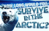 how_long_would_you_survive_in_the_arctic_featured