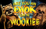 are_you_an_ewok_or_a_wookie_featured